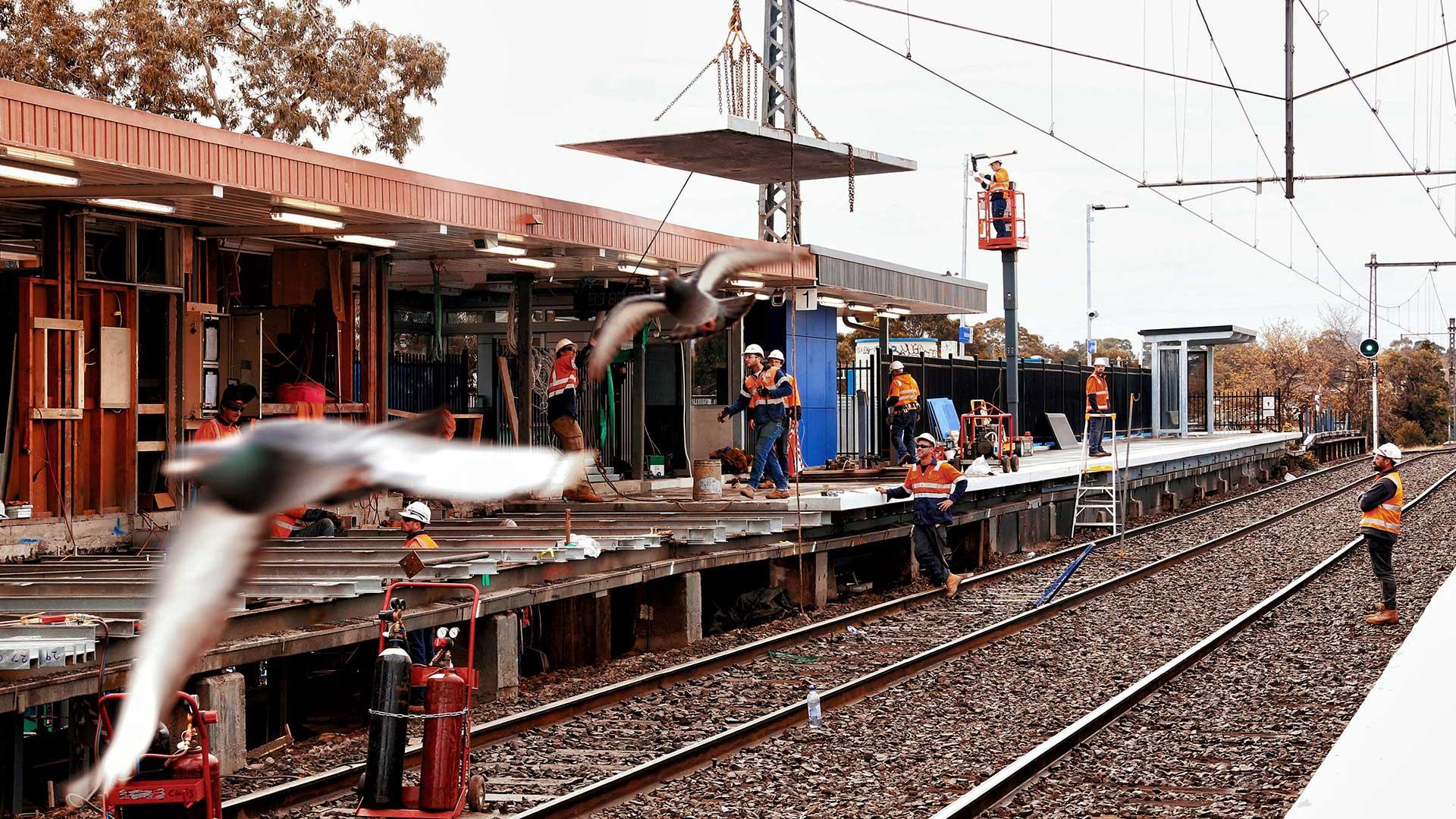 Pete Glenane. HiVis Pictures. Public Transport Victoria.